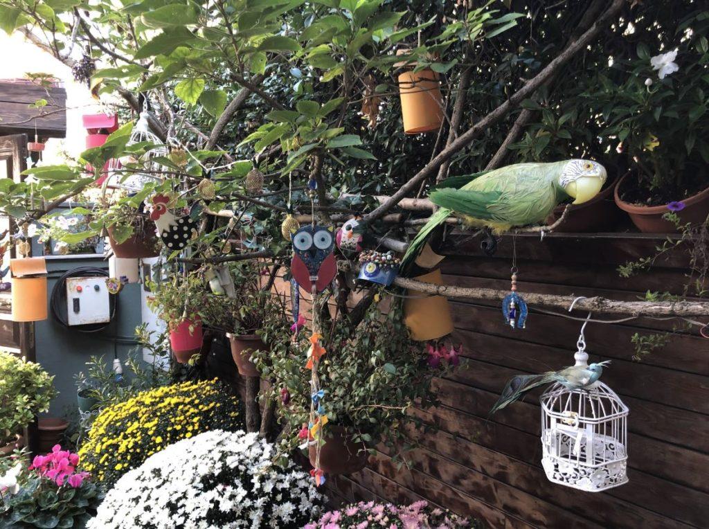 Goksu Cafe Garden